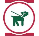 icon-vet